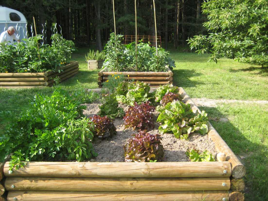 25 potager hors sol install sur une pelouse. Black Bedroom Furniture Sets. Home Design Ideas