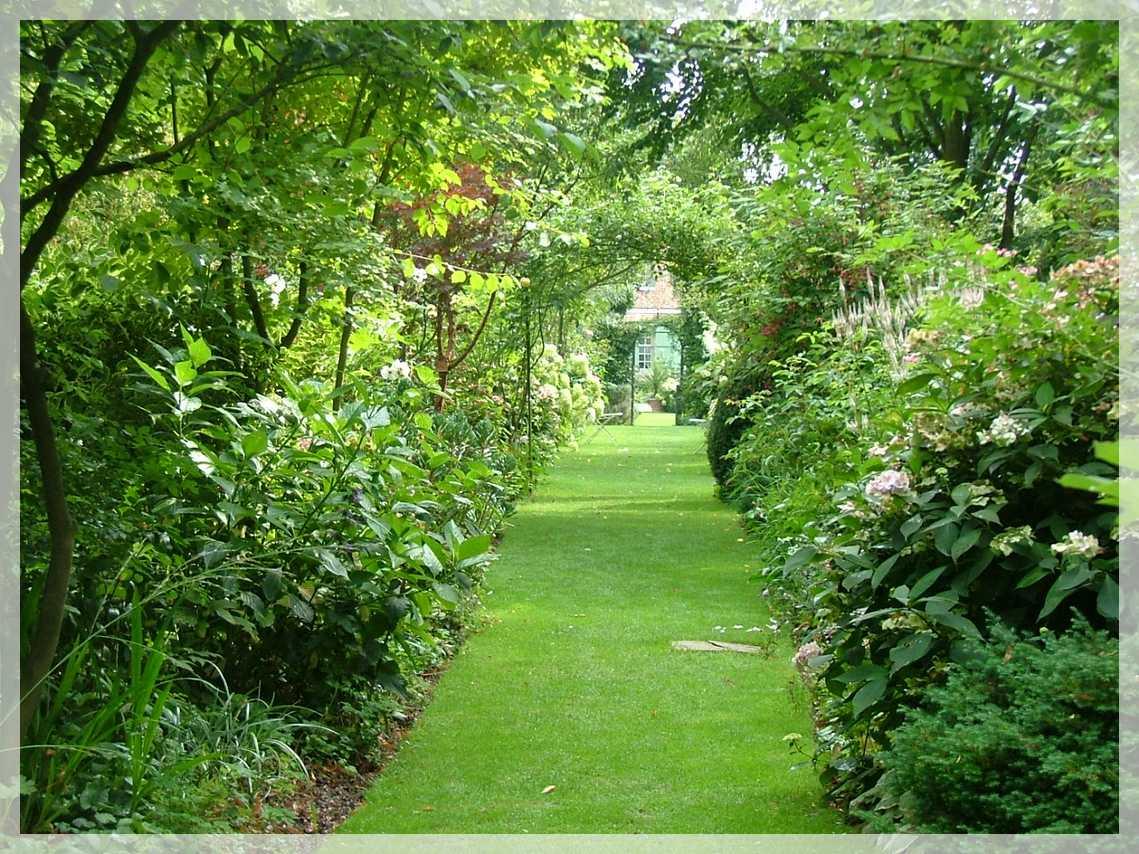 Le Jardin D Angelique