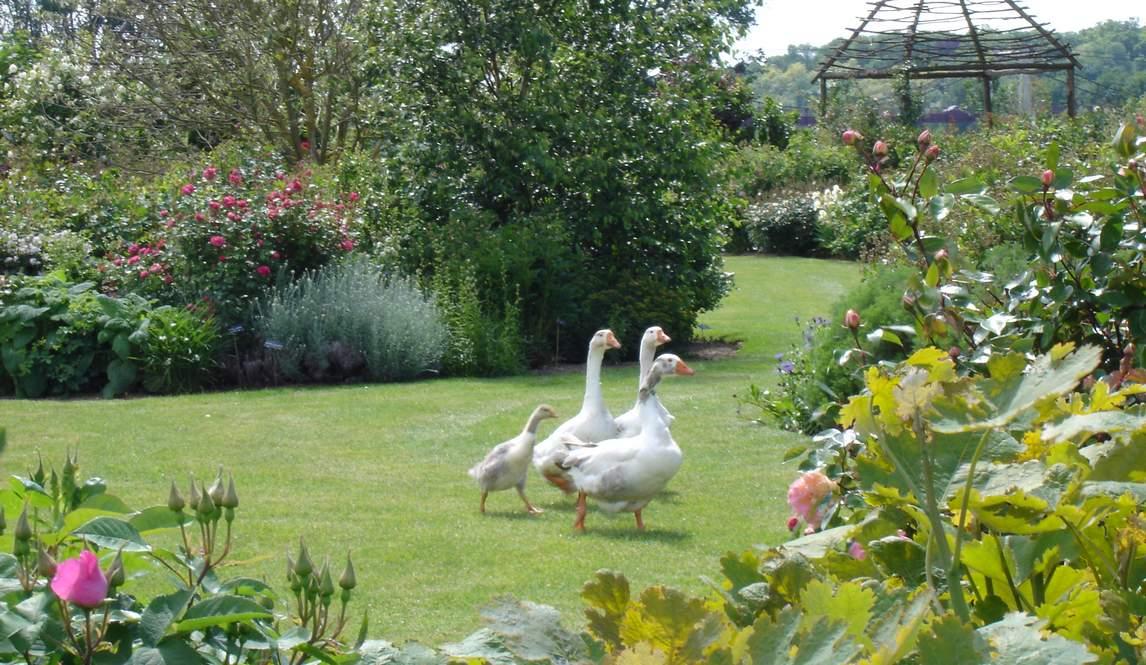 Les jardingues visite de jardins remarquables for Entreprise parc et jardin